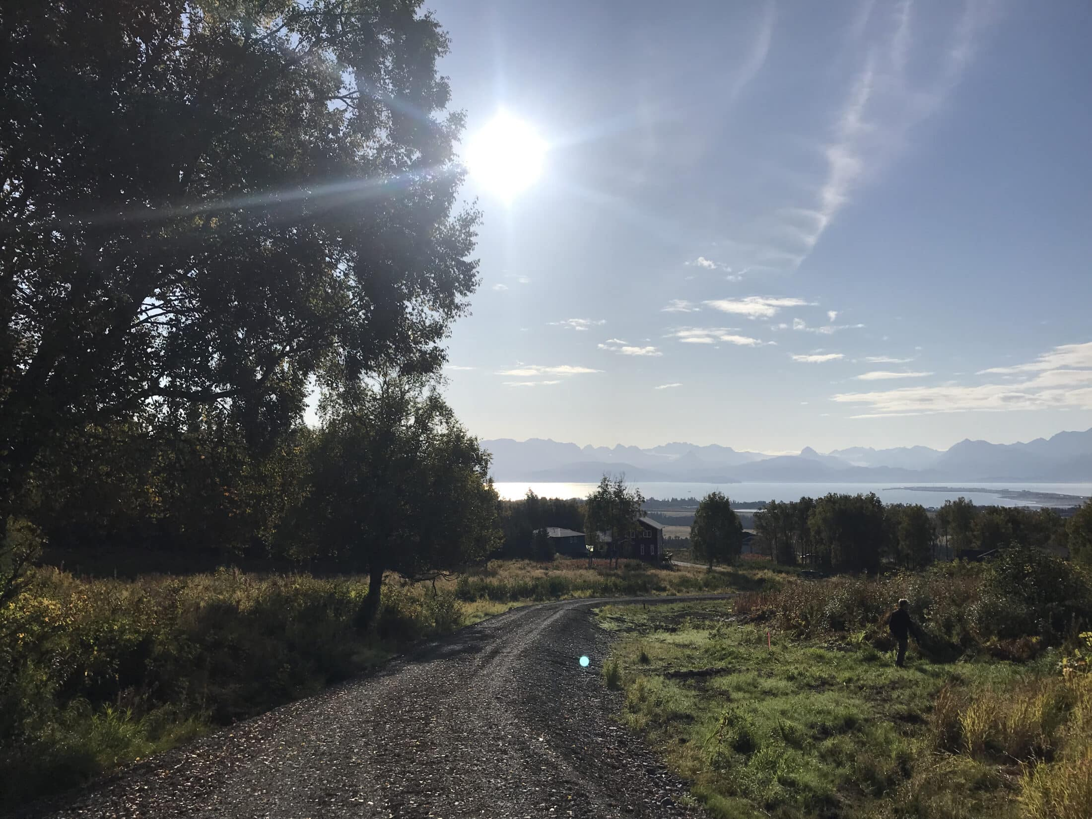 My Four Favorite Walks and Hikes in Homer, Cozy Cove Inn